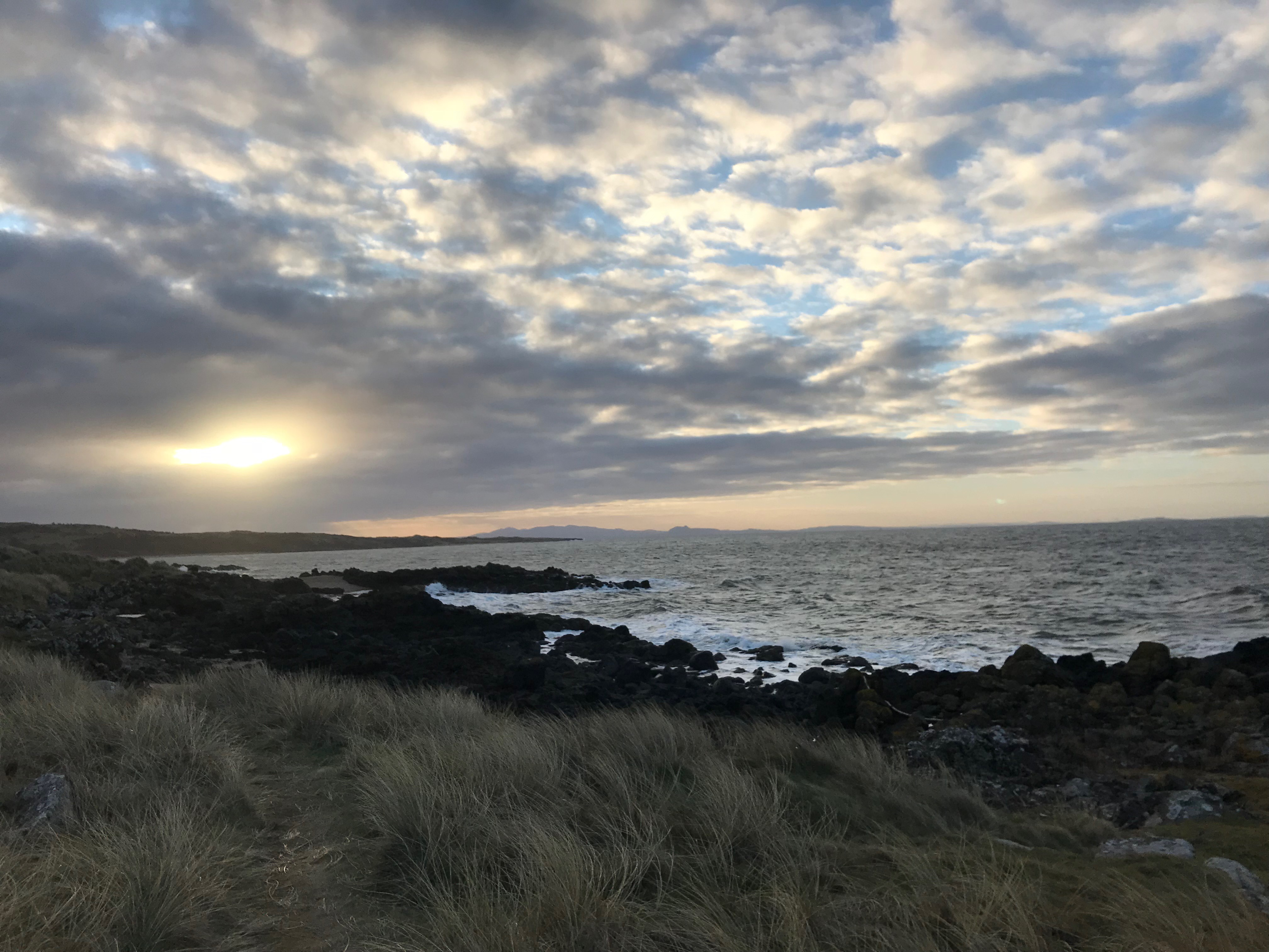 Join us for a beautiful walk at our next Community Connection Gathering with Agnostic Scotland.